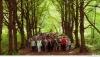 все участники в лесу